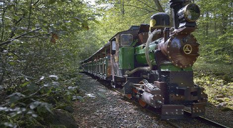 The Adventurers' Train
