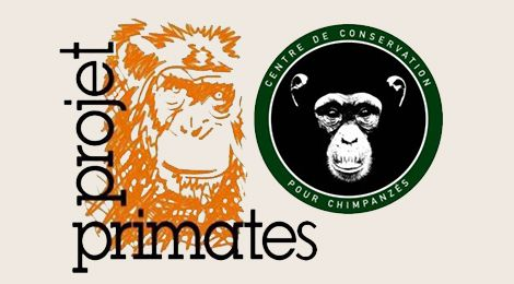 Primates France Project